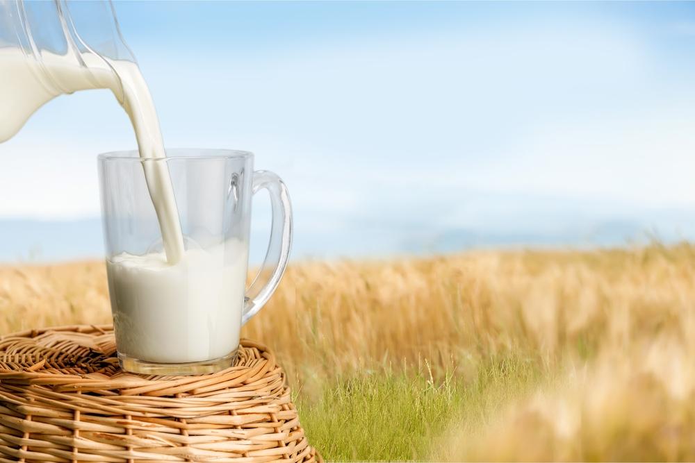 Resíduos de antibióticos no leite: impacto para a indústria e o consumidor