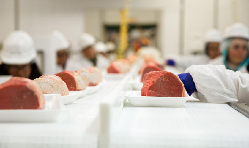 A Qualidade como setor gerador de crescimento para a cadeia produtiva de alimentos