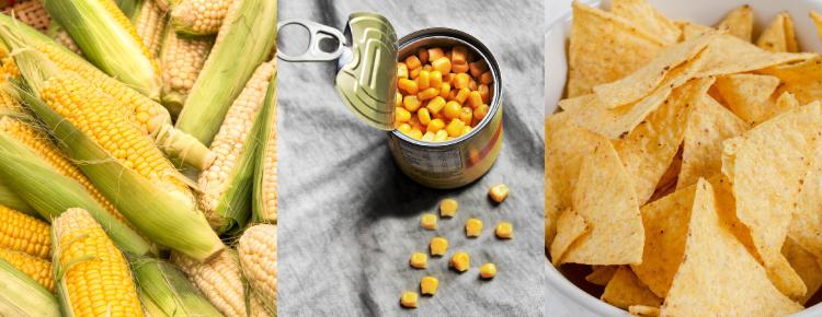 Alimentos in natura, minimamente processados, processados e ultraprocessados: Principais diferenças, vantagens e desvantagens